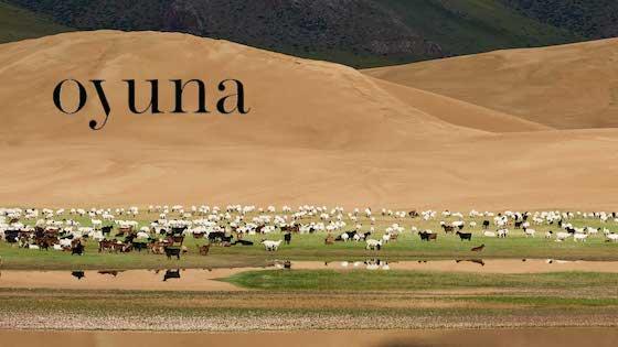 Oyuna - Plaids en Cachemire de Mongolie